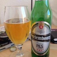 0c303c2ef3dd5654a8c541fe43b3ad2b--pilsen-beer