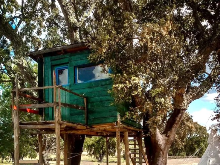 South Glamping Magic Tree House